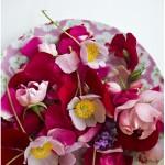 Torkade rosor