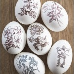 Rub-ons on Easter eggs - by Craft &amp; Creativity